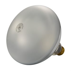 Pentair Parts 79101900 Light Bulb 12V 300W