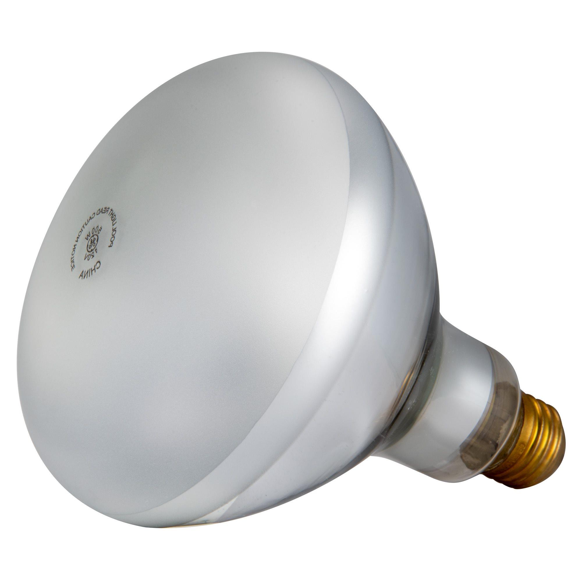 Pentair Parts 79102100 Light Bulb 120v 500w