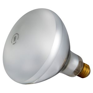 Pentair Parts 79102100 Light Bulb 120V 500W