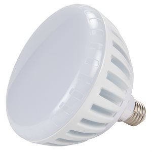 PureWhite LED Replacement Pool Lamp For 120V Installations