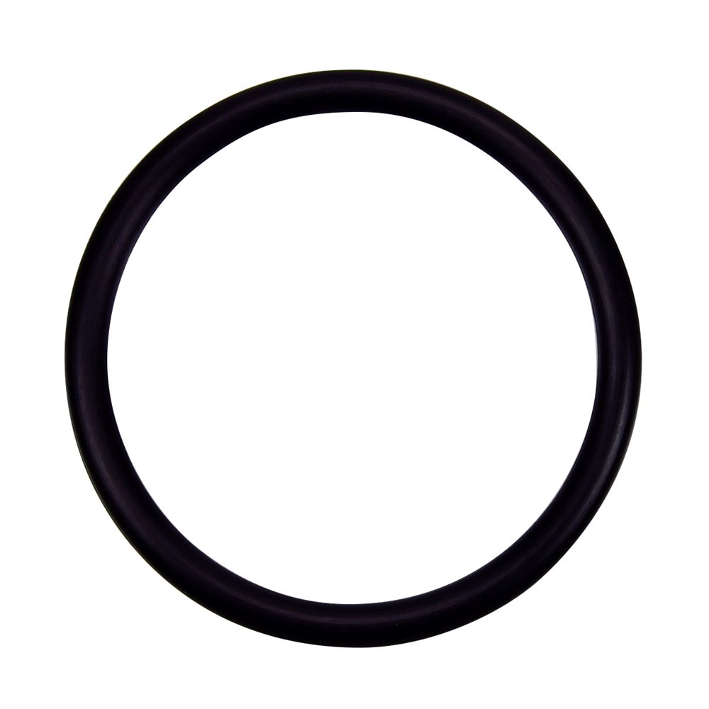 Pentair Parts 274494 O-ring 3 / 16 in. x 2-5 / 8 in.