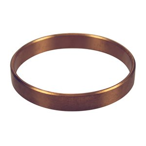 Pentair Parts 16830-0120 Wear Ring