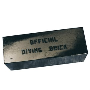 Water Gear Official 10 Lb. Diving Brick